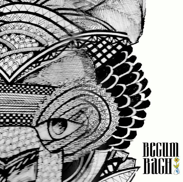 Begum <BR>&#8220;Bagh&#8221;