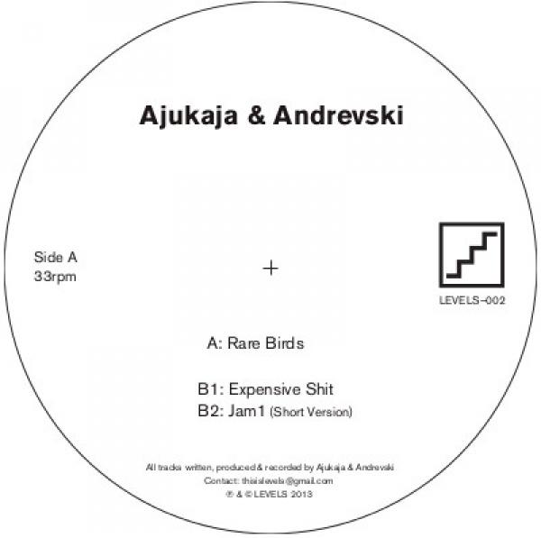 Ajukaja &#038; Andrevski <BR>&#8220;Rare Birds&#8221;
