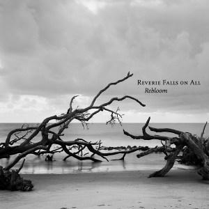 Reverie Falls On All<BR>&#8220;Rebloom&#8221;