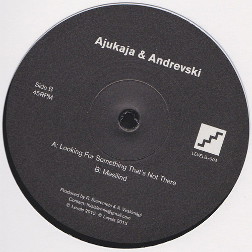 """Ajukaja & Andrevski  <BR>""""Looking For Something That's Not There"""""""