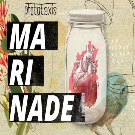 Phototaxis <BR>&#8220;Marinade&#8221;