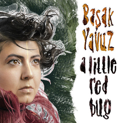 "Başak Yavuz <BR>""A Little Red Bug"""