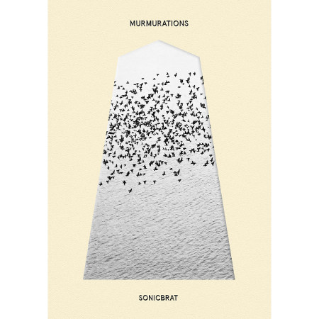 sonicbrat <BR>&#8220;MURMURATIONS&#8221;
