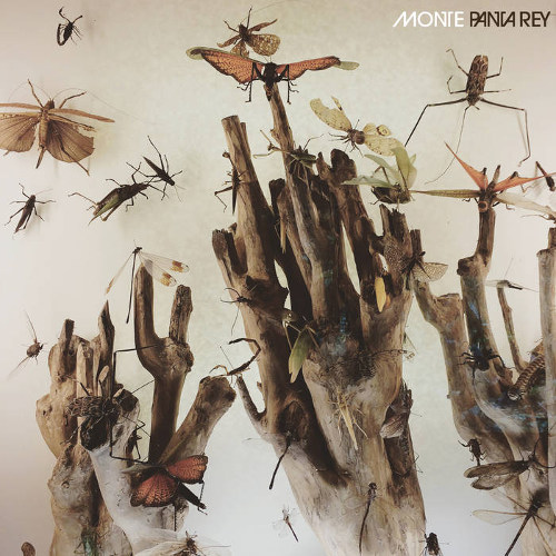 Monte <BR>&#8220;Panta Rey&#8221;