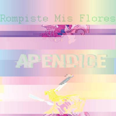 Rompiste Mis Flores <BR>&#8220;Apéndice&#8221;