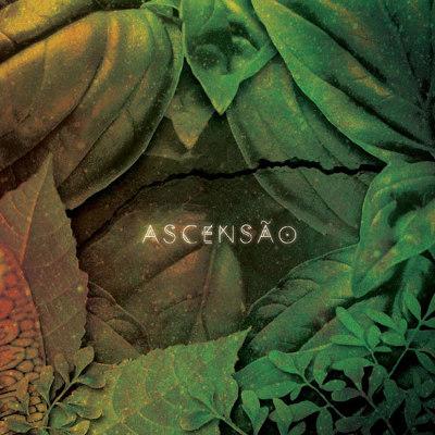 Serena Assumpção <BR>&#8220;Ascensão&#8221;