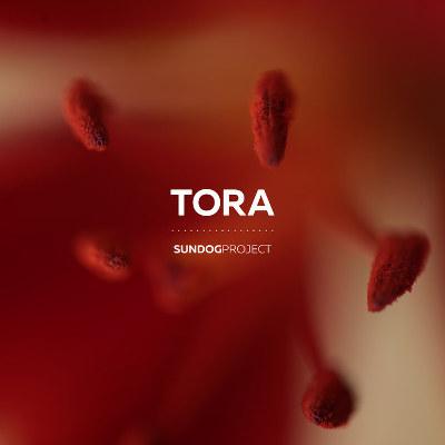 """Sundog Project <BR>""""Tora"""""""