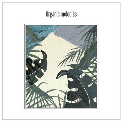 "Puzzle Man ""Organic Melodies"" (有機的旋律們)"