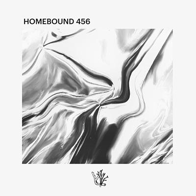 """Vaarwell <BR> """"Homebound 456"""""""