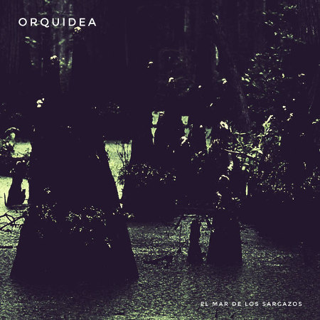 Orquídea <BR>&#8220;El Mar de los Sargazos&#8221;