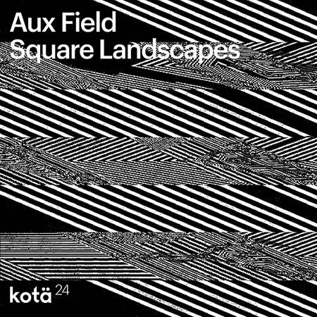 """Aux Field <BR> """"Square Landscapes"""""""