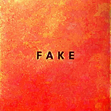 """Die Nerven <BR> """"Fake"""""""
