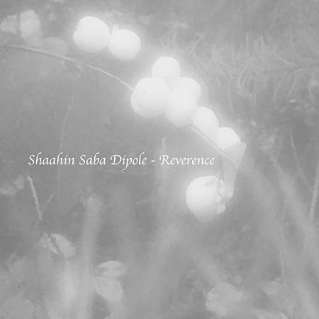 "Shaahin Saba Dipole <BR> ""Reverence"""