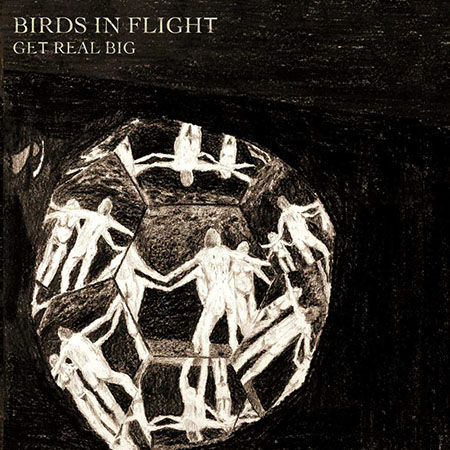 "Birds in Flight <BR> ""Get Real Big"""